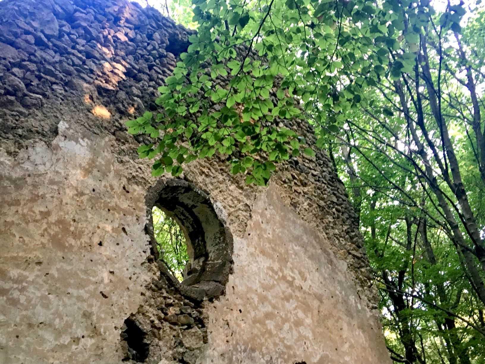 A Tálodi kolostorrom épen maradt fala