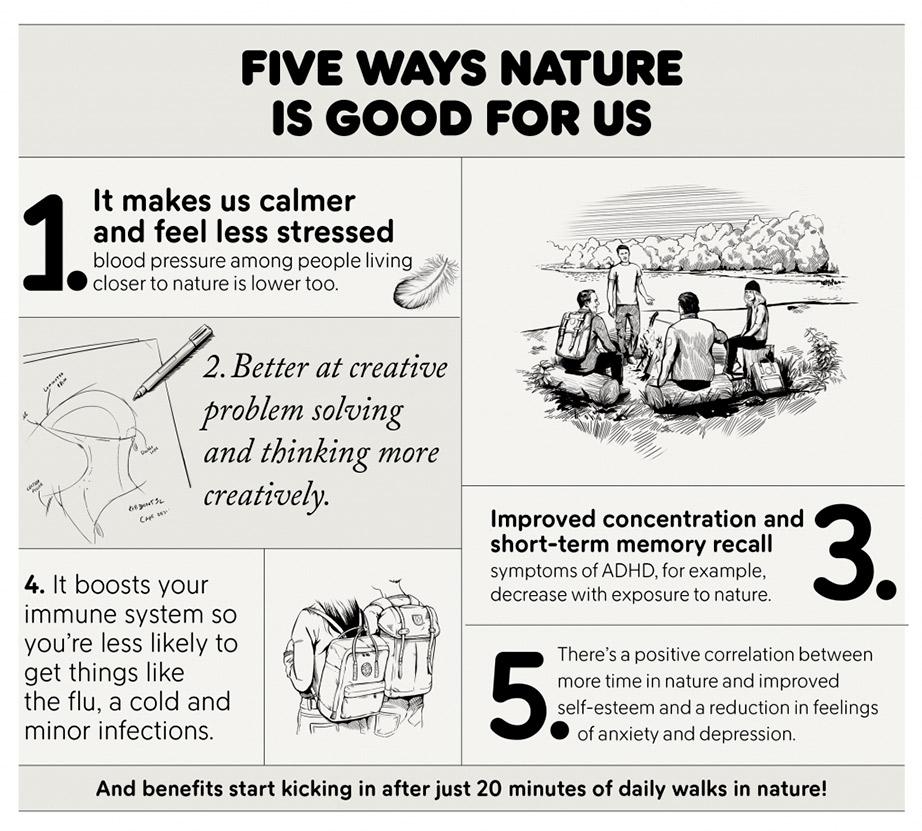 Öt tény, miért jó a természetben