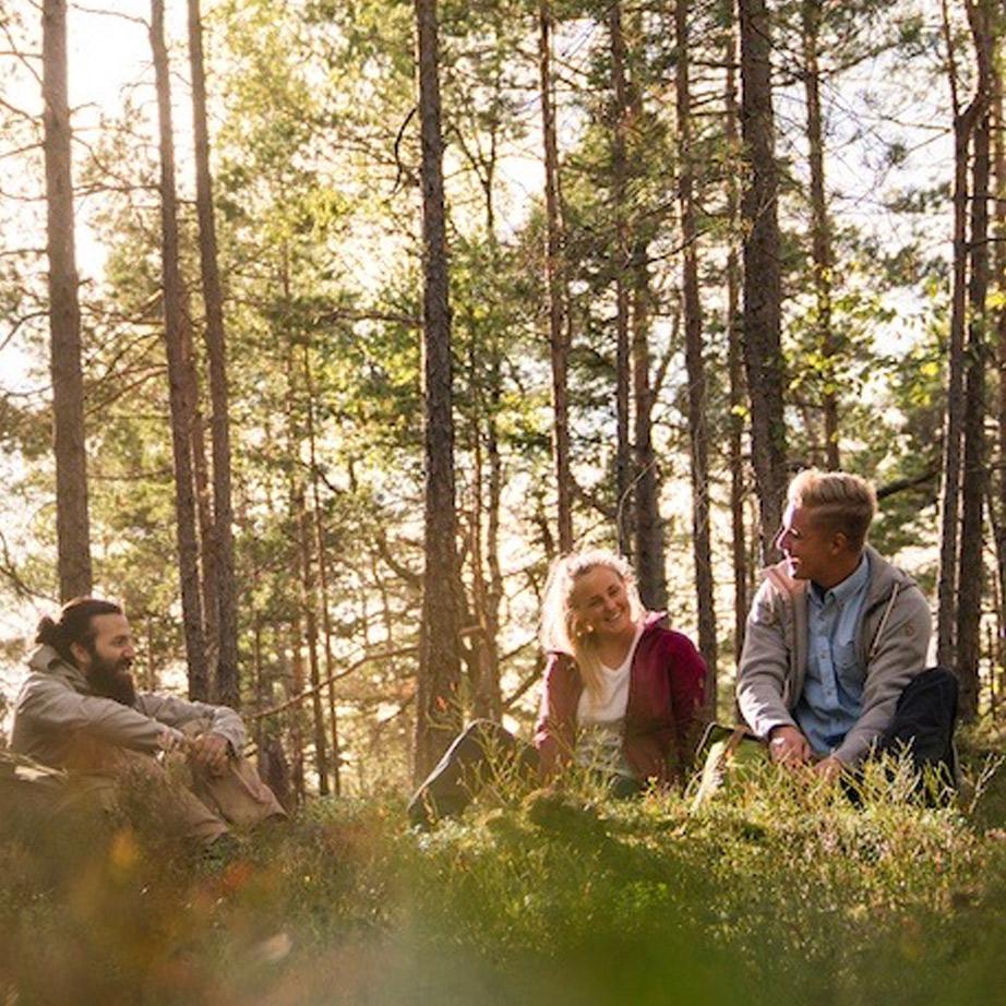 Pihenés az erdőben